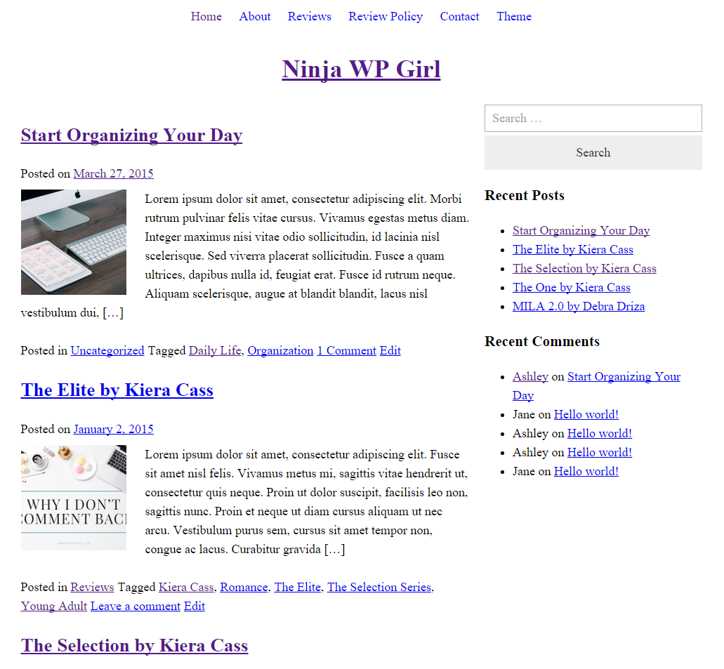 A blank, unstyled WordPress parent theme.